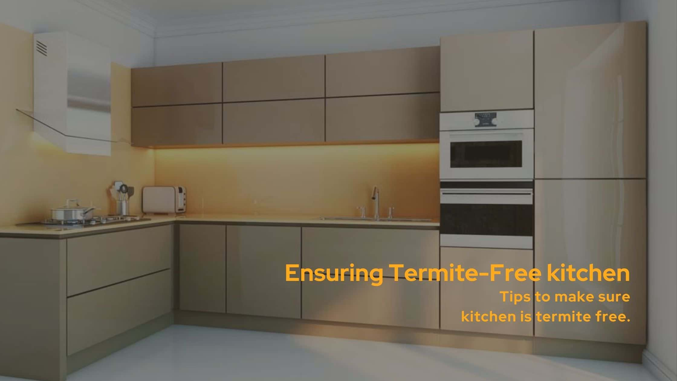 Tips to make sure the kitchen is Termite-Free | Termite ...